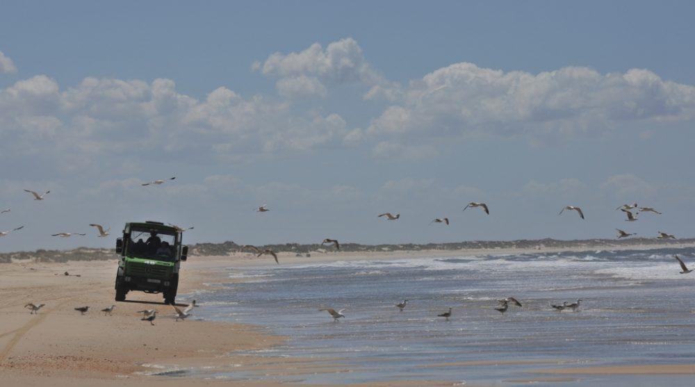 Coche-en-la-playa